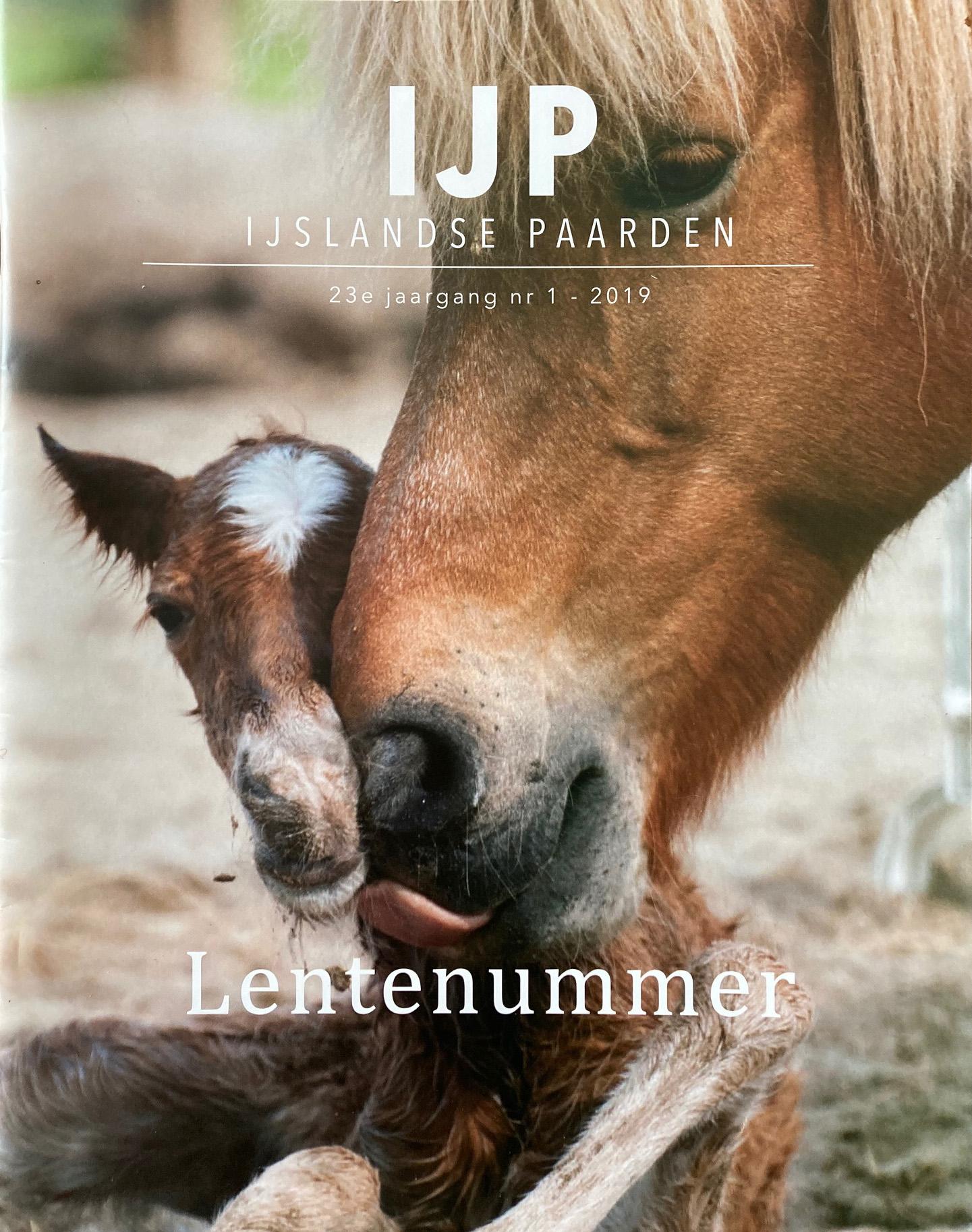 Omslag IJP IJslandse Paarden